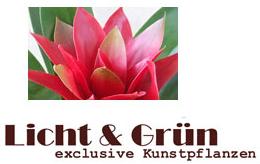 Licht & Grün-Logo